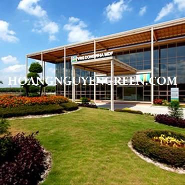 Nhà Máy Chế Biến Gỗ MDF VRG Dongwha