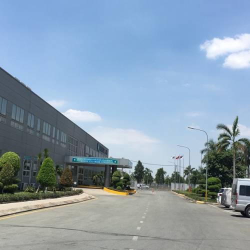 Bảo Dưỡng Cảnh Quan Nhà Máy Daeyoung