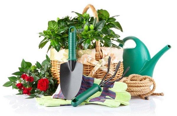 bộ dụng cụ làm vườn đẹp